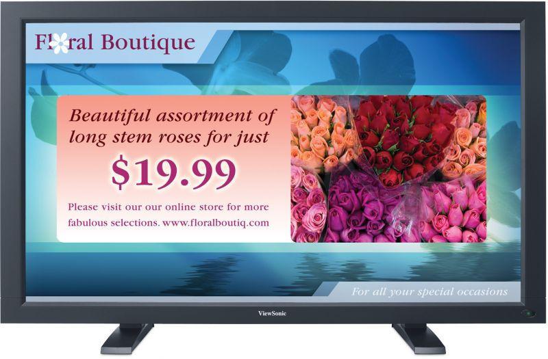 ViewSonic Digital Signage CD4220