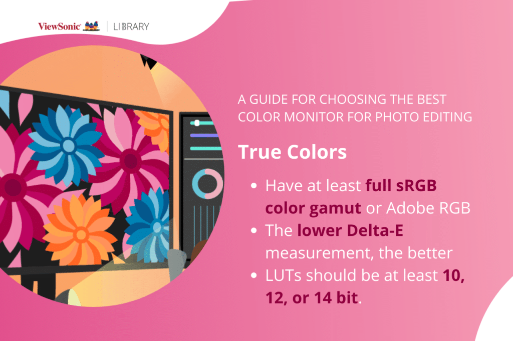 Best monitor for photo editing color