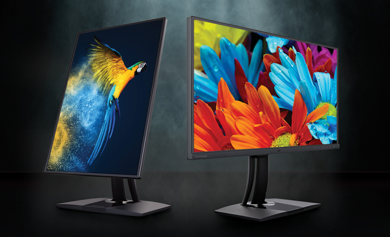 How to Choose the Best Monitor for Photo Editing