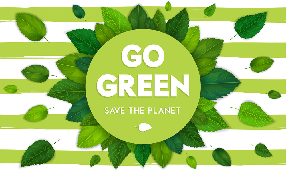 Our Green Company Vision