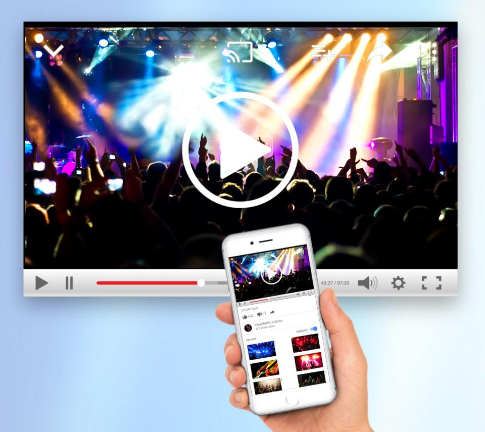 Apple® AirPlay® Support