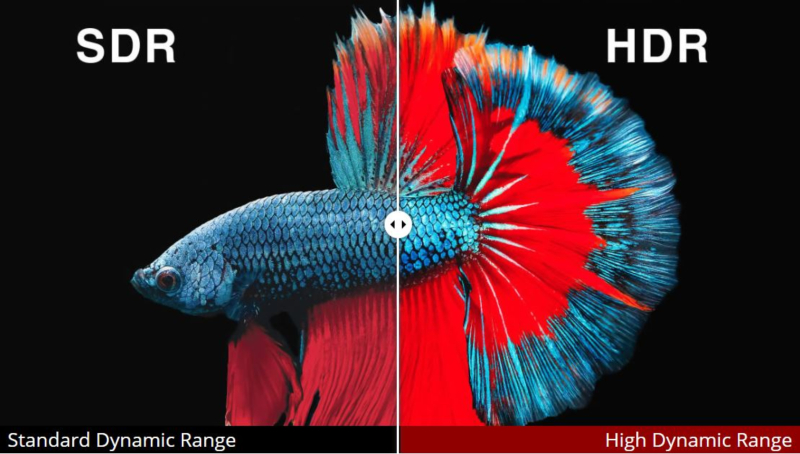 What is HDR (High Dynamic Range)? HDR vs  SDR Compared