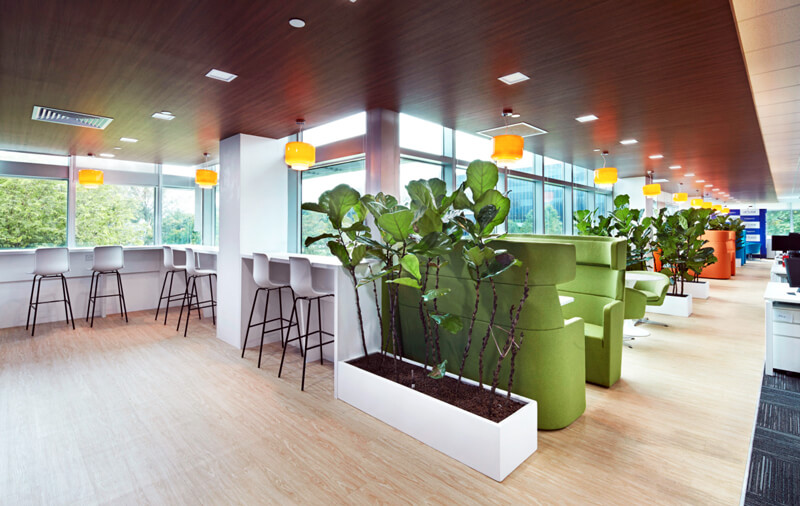 Workplace designed for well being