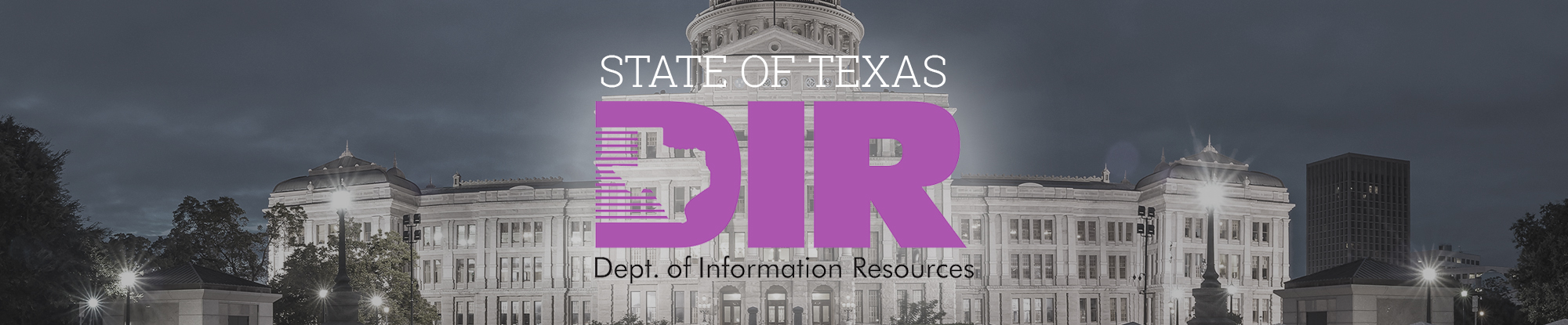 State of Texas DIR