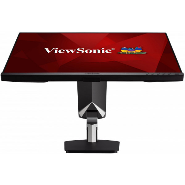 ViewSonic LCD Display TD2455